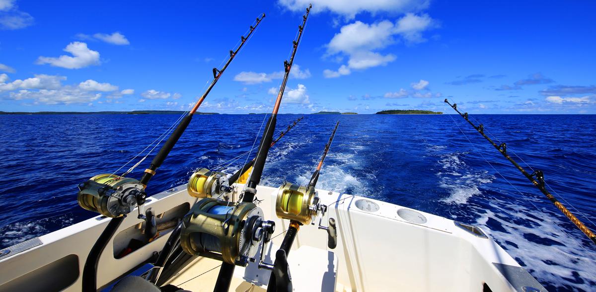 Fish tonga hakula tonga kingdom travel for Sport fishing games