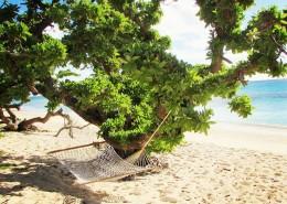 sandy beach 1
